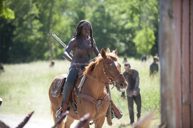 the-walking-dead-infected-michonne-horse