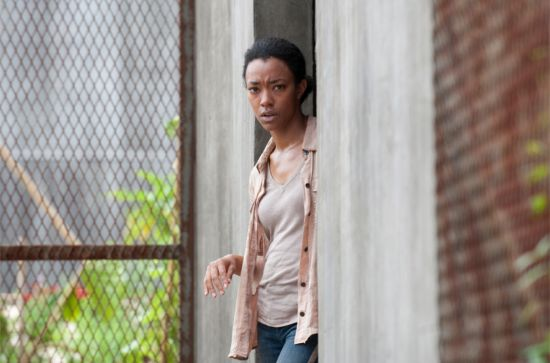 The Walking Dead Isolation Sasha