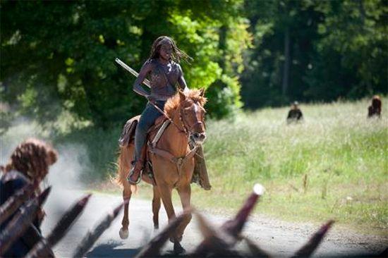 Walking Dead Infected Michonne