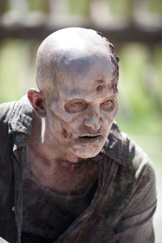 Walking Dead Infected Walker