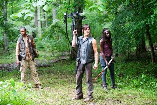 Walking Dead Isolation Daryl, Michonne, Bob Stookey