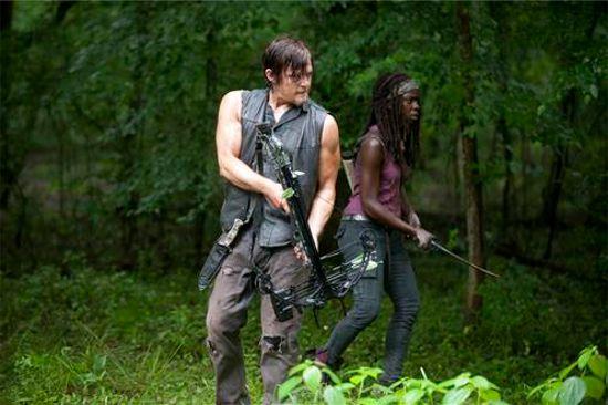 Walking Dead Isolation Daryl & Michonne