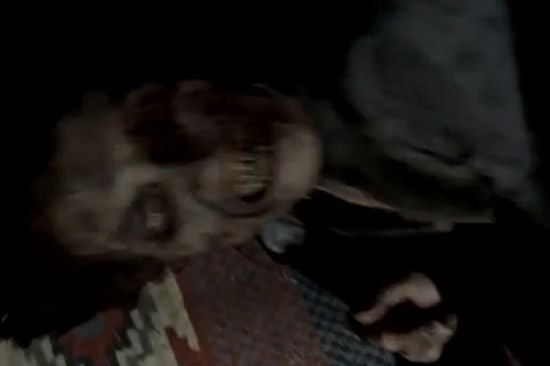 The Walking Dead Dark Knight