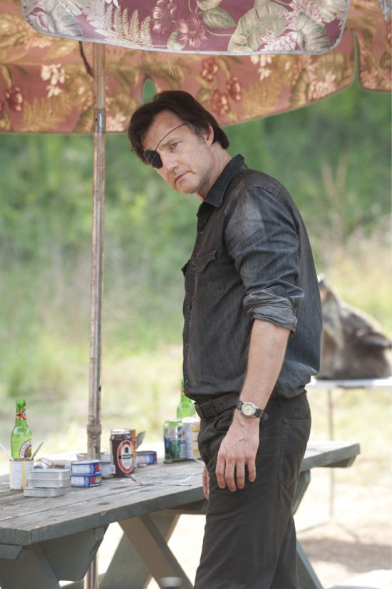 The Walking Dead Dead Weight The Governor