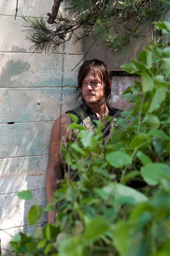The Walking Dead Indifference Daryl